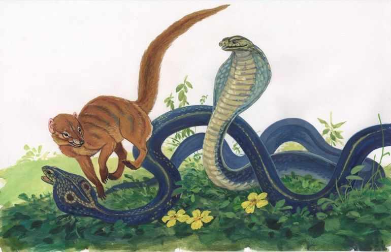 Бой со змеями