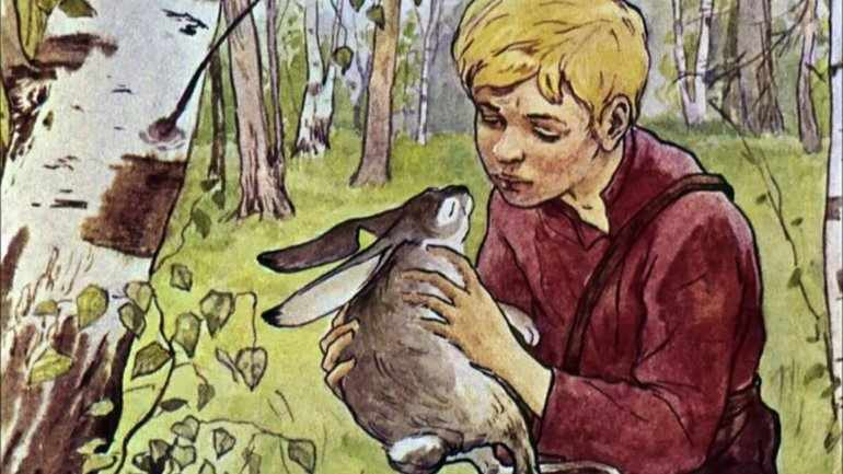 Сострадание людей к животным