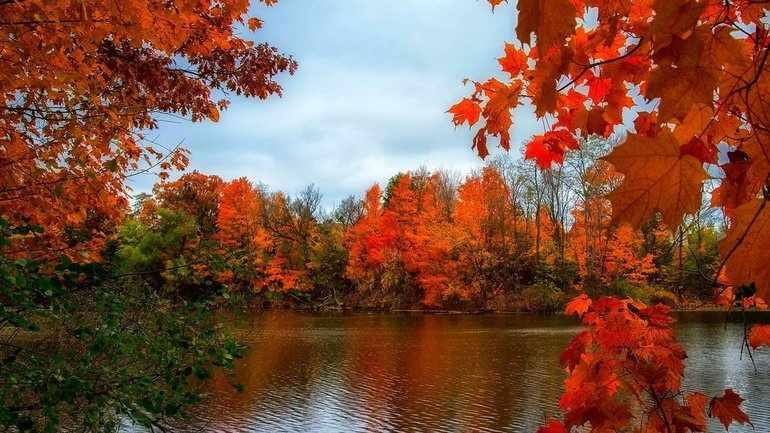 Как писать сочинение на тему осень