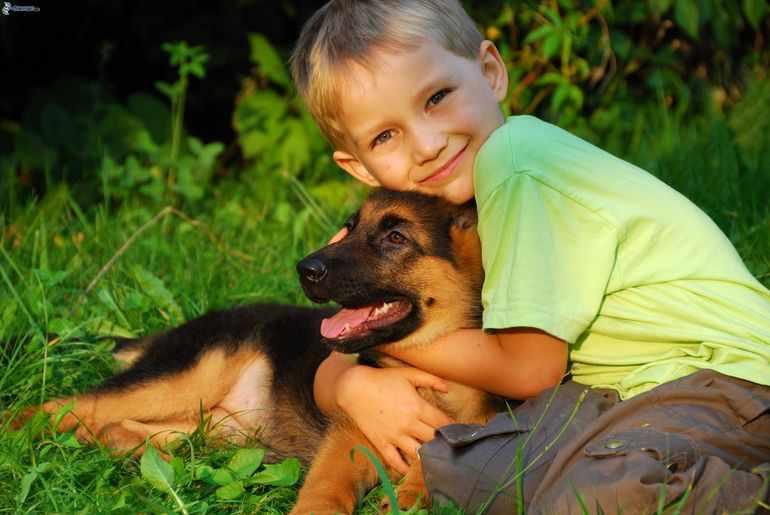 Дети часто обнимают питомцев