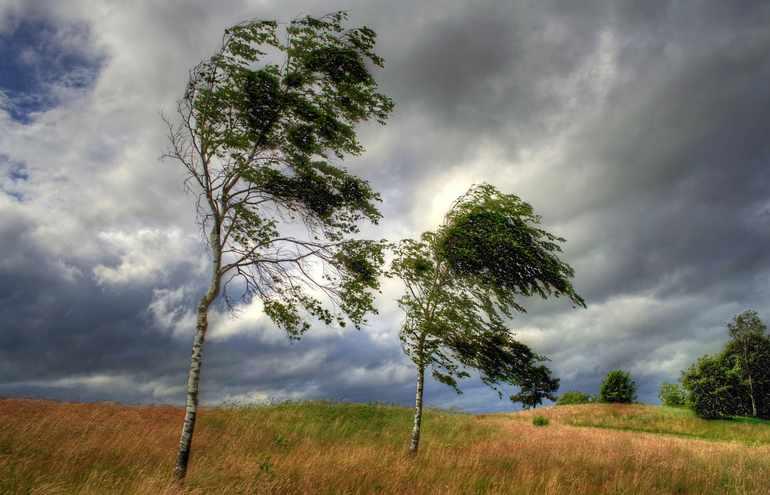 Ветренная погода