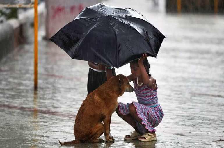 Человеку следует воспитывать в себе сострадательность